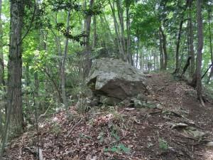 鷹取山登山道の巨石